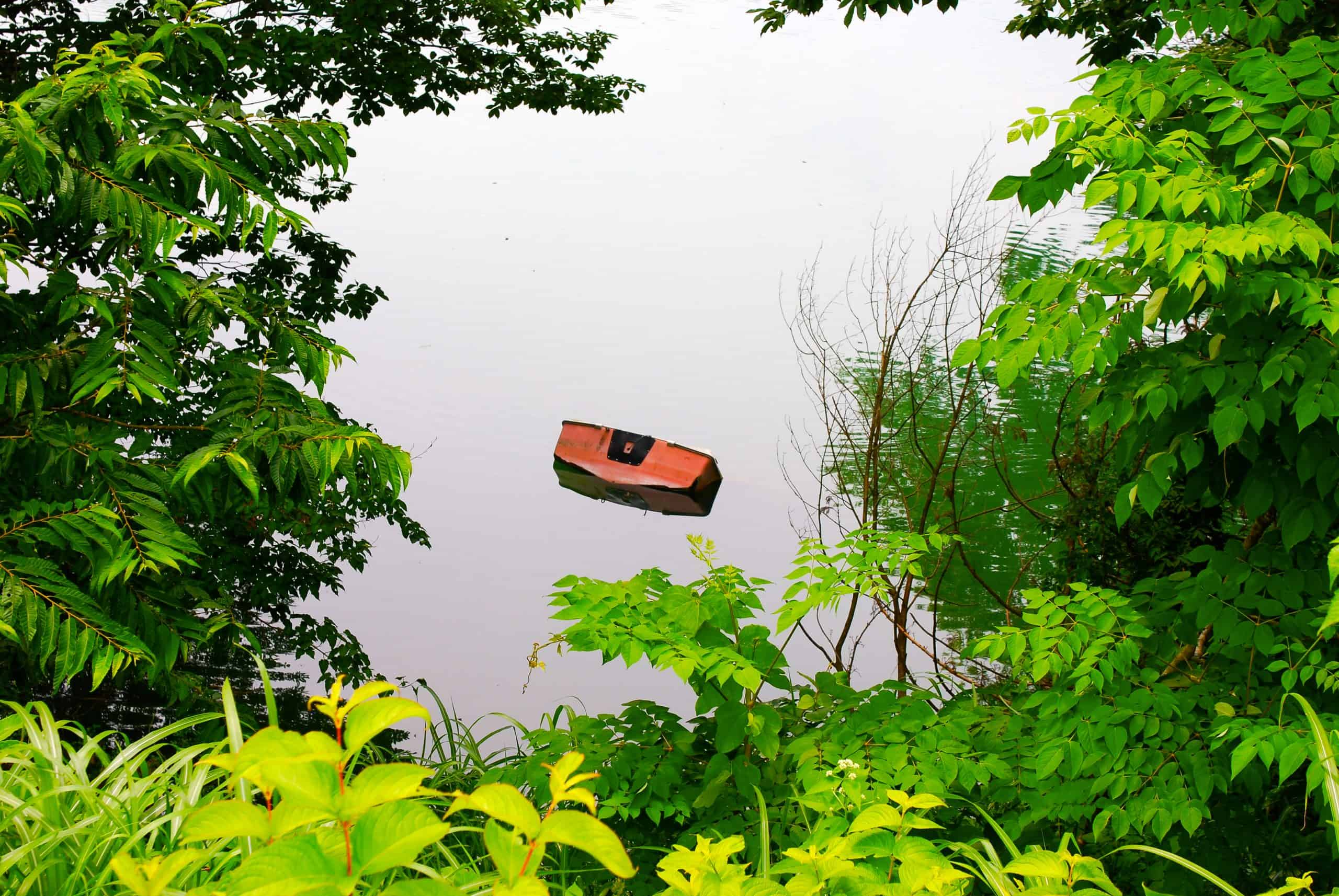 Half sunken boat in water encircled by lush greener