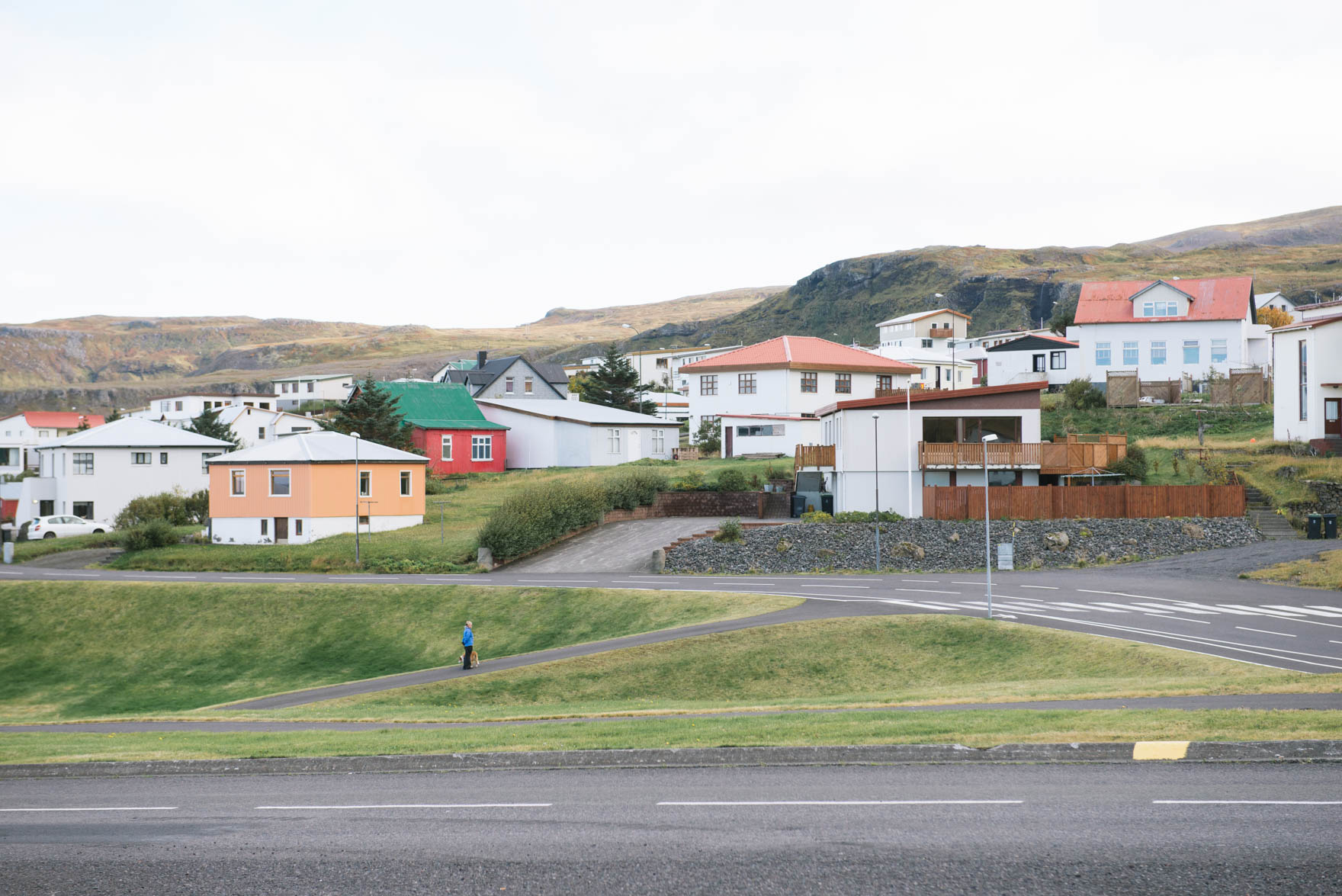 A solidary woman and her dog pause in the middle of an empty road in the foreground of a cluster of pastel colored houses